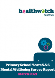 front cover of primary school mental health survey report
